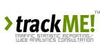 traffic statistics and website analytics consultation