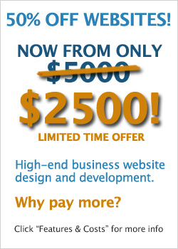 Premium websites from only $2500
