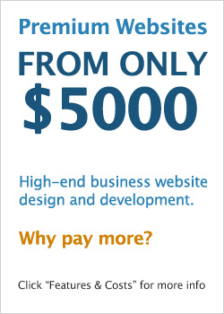 Premium websites from only $5000