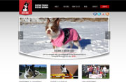 Donated Web Design for Boston Terrier Rescue Canada