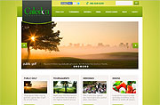 Website Design Development and Content Management for GolfCaledon.com